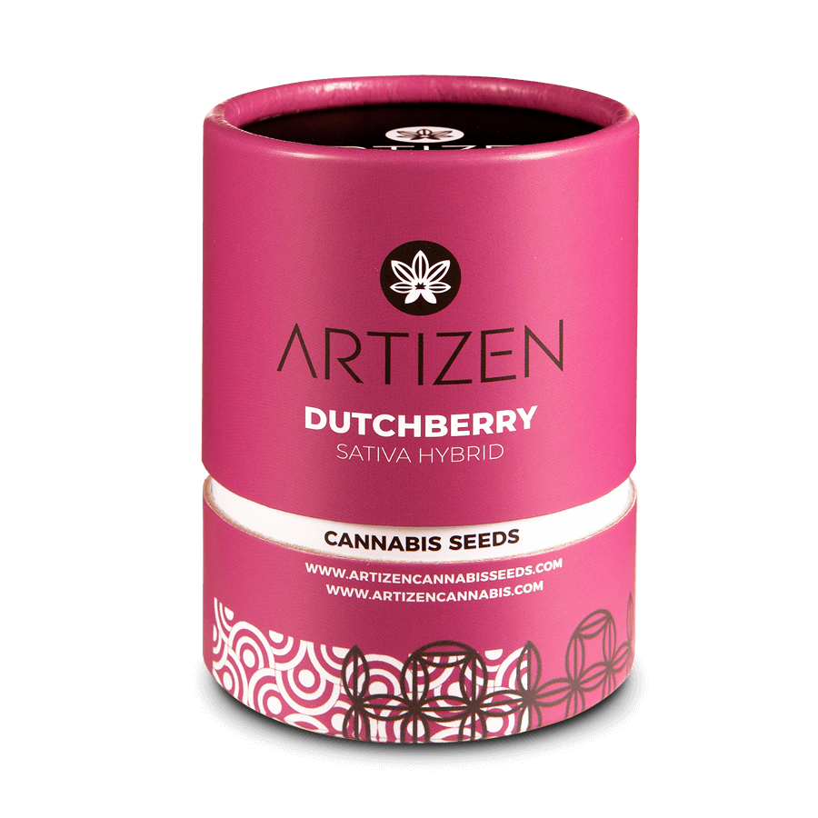 Dutchberry Feminizada (3 Unidades) ARTIZEN