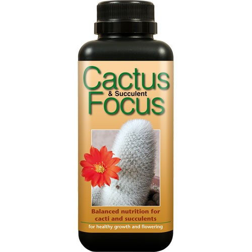 Cactus Focus 500 ml  () GROWTHTECHNOLOGY