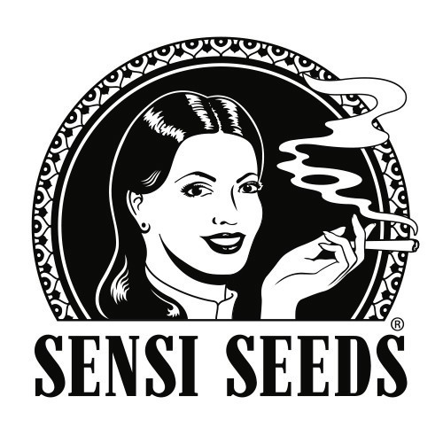 Afghani #1 Regulares (10 Unidades) SENSI SEEDS