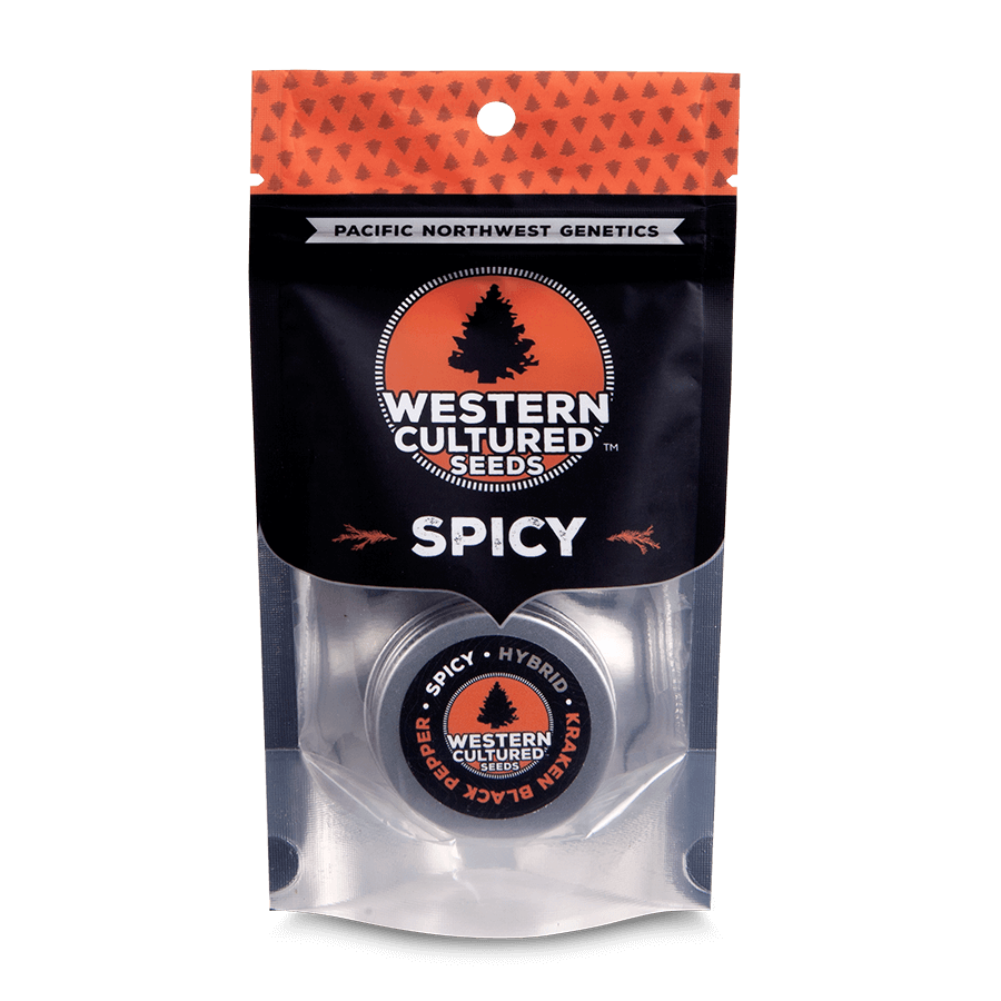 Kraken Black Pepper Feminizada (3 Unidades) Western Cultured